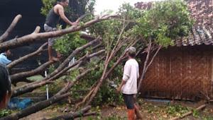 Hujan es terjang 5 desa di Madiun
