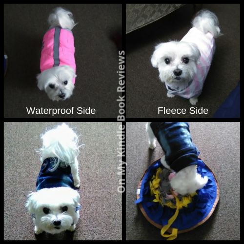#LexiFuzzyBottom showing off her new jackets and snuffle mat. Images by Charity Rowell at On My Kindle BR.