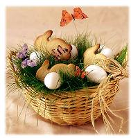 The Nature Basket