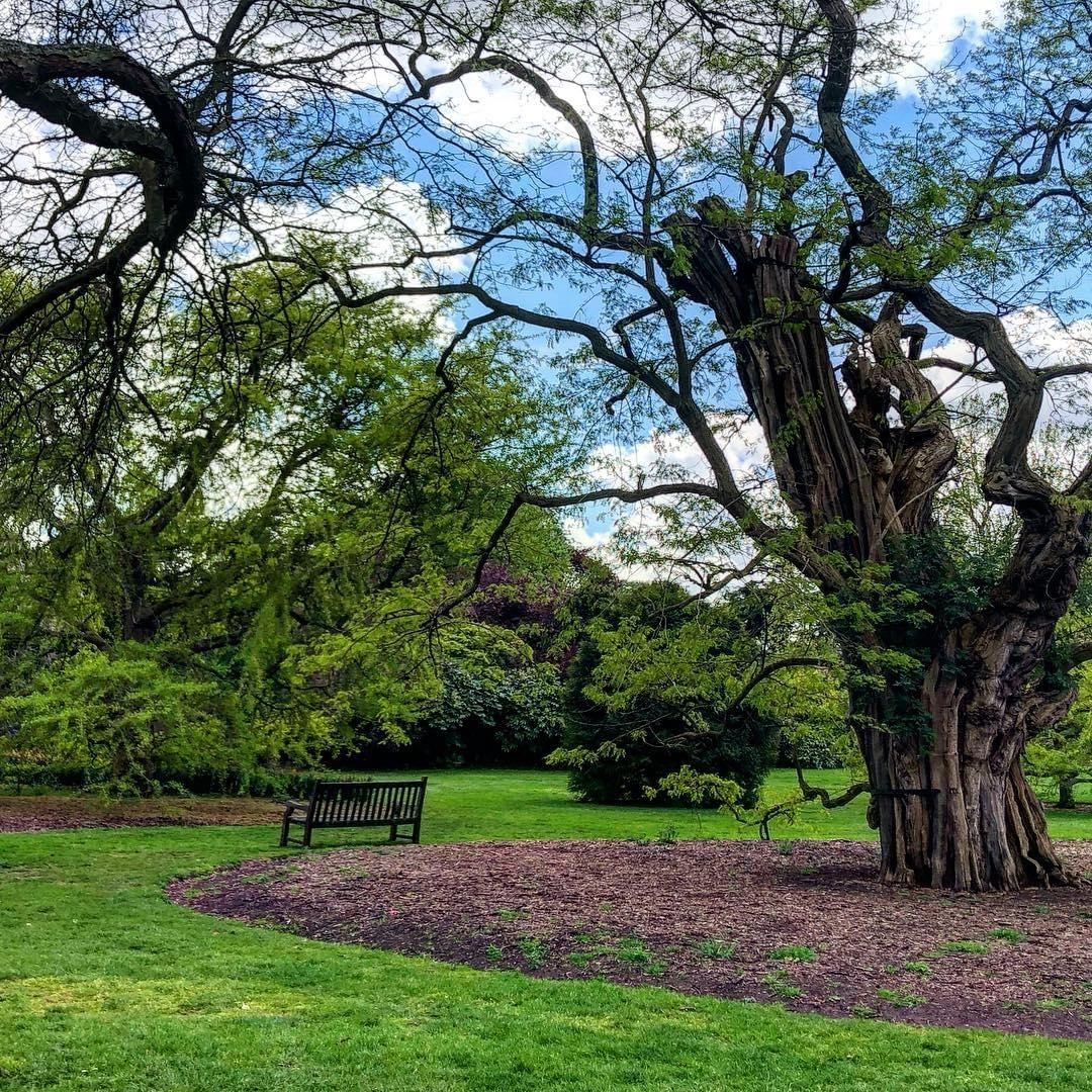 Wisata Favorit London Kew Gardens