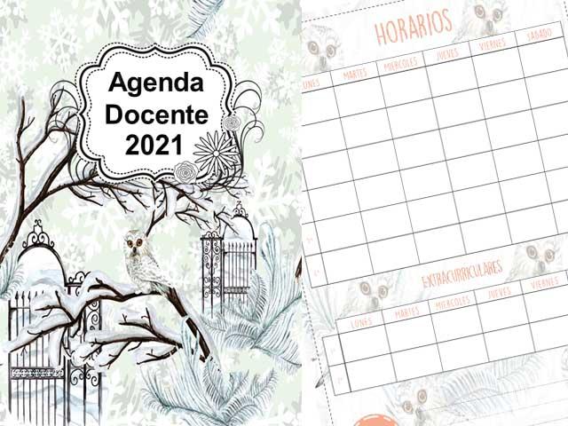 Agenda Docente Lechuza 2021 - 177 páginas