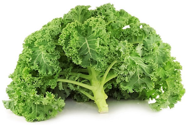 Kale recetas gourmet
