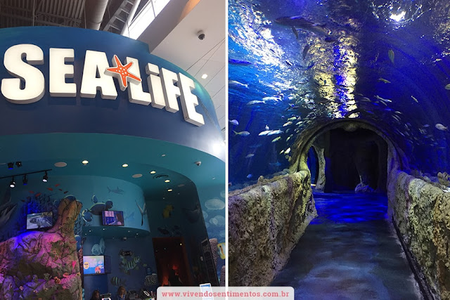 Sea Life Aquarium e Orlando Eye