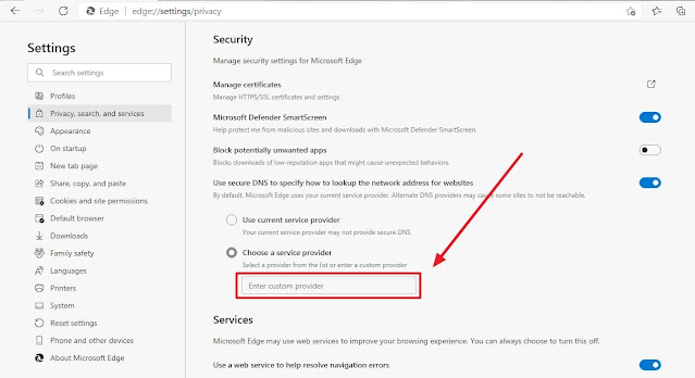box highlighting choose a custom service provider