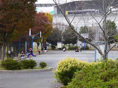 寝屋川公園 バスケットゴール