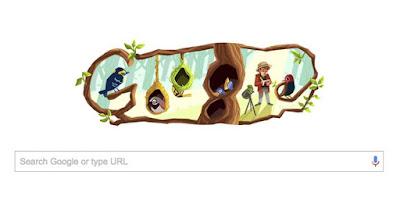 10 Fakta Unik Phoebe Snetsinger, Sang Peneliti Burung, Doodle