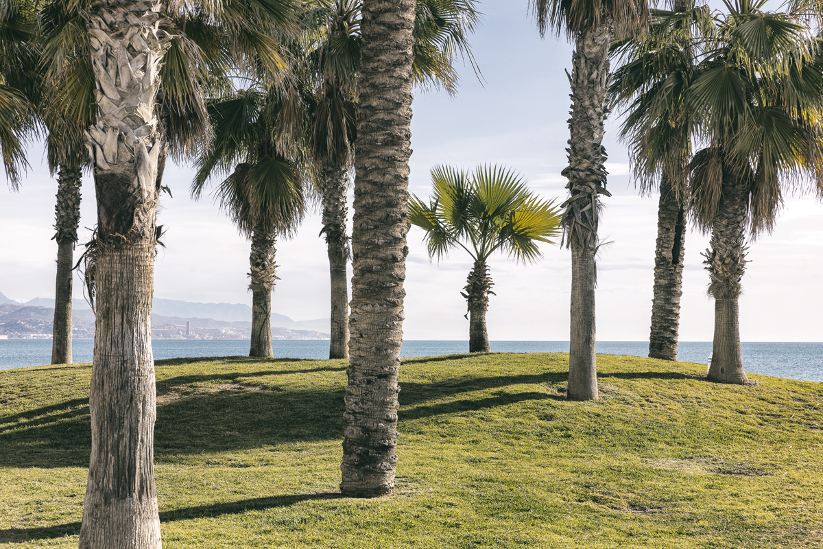 Malaga, Spain, visitspain, Andalucia, Espanja, Costa del Sol, aurinkorannikko, kaupunkikuvaus, streetphotography, valokuvaus, photography, photographer, valokuvaaja, Frida Steiner, Visualaddict, Visualaddictfrida, nature, palmtrees, seaside, beach