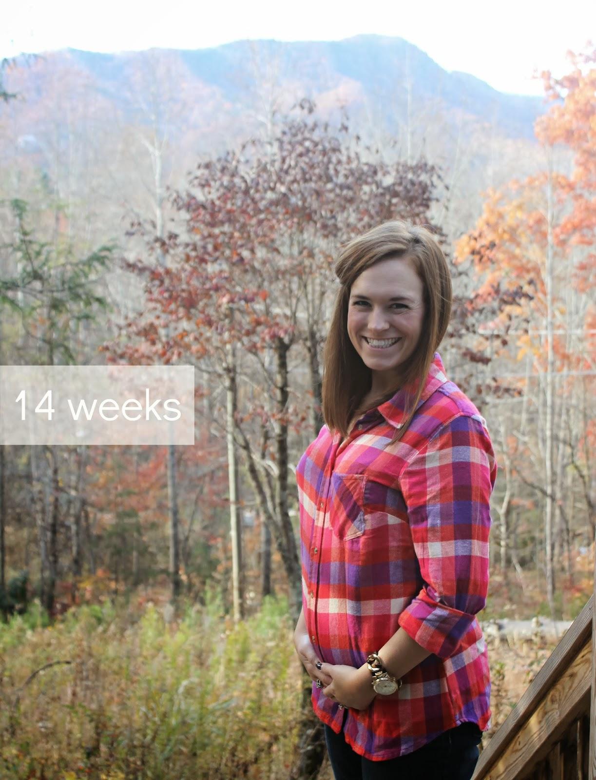 Week 14 Bumpdate