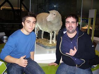 oveja Dolly en el museo nacional de Escocia