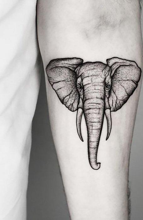 Tato Gajah