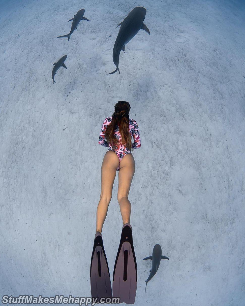 Amazing Underwater Photography by Jason Washington