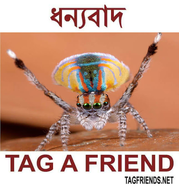 How To Say Thank You In BENGALI