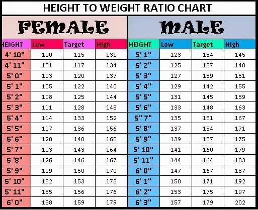 Ideal waist size celebrity measurements height weight bra shoe body also bogasrdenstaging rh