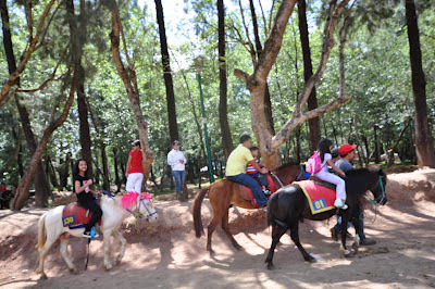 Horse back riding at Wright Park, Pacdal, Baguio City