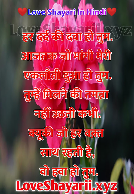 New 500+ Love Shayari in Hindi | लव शायरी हिन्दी में