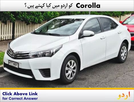 Meanings of Corolla