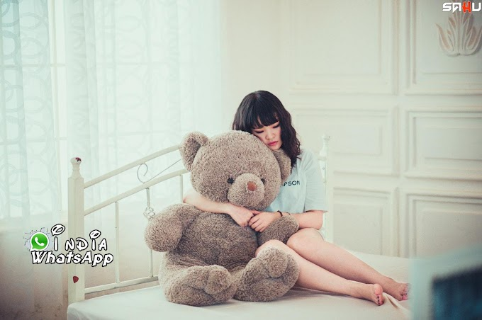 Teddy Day Top 10 Shayari | Whatsapp