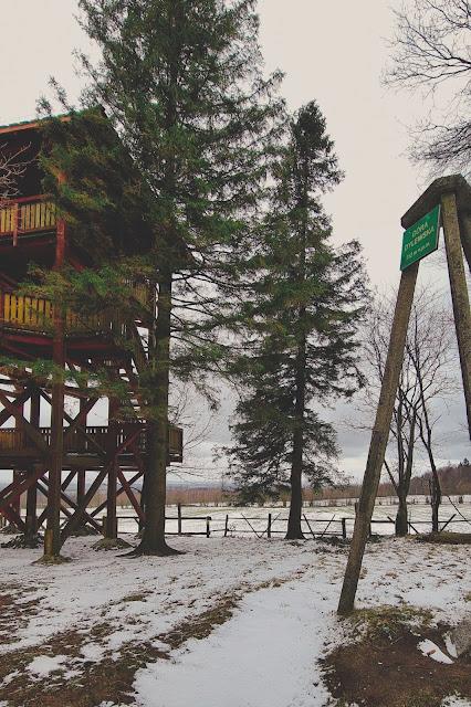 Dylewska Góra - najwyższy szczyt województwa warmińsko-mazurskiego