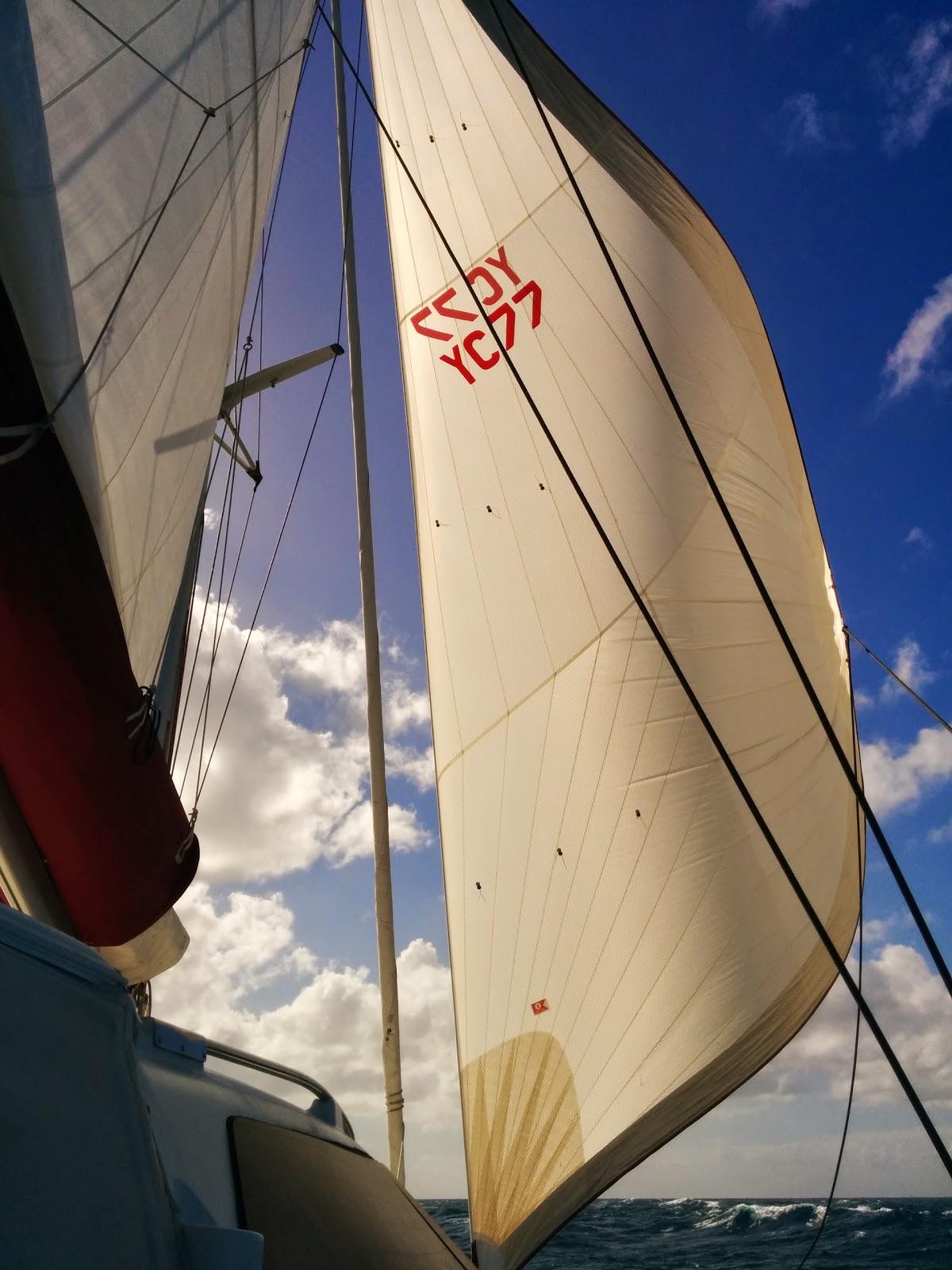 Cruise: Sail, Kayak, Hike Pelican Lagoon