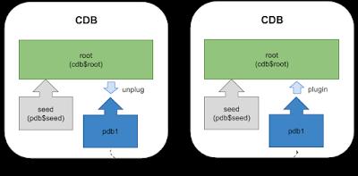 Database Multitenant, Oracle Database PDB, Oracle Database, 12c