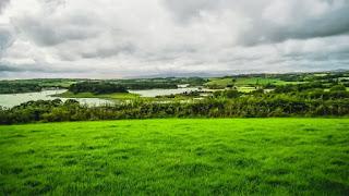 Green Pastures - Photo by K. Mitch Hodge on Unsplash