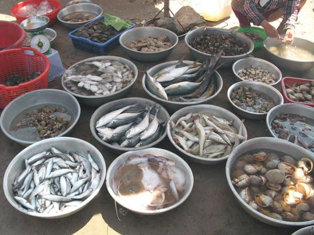 Ngoài ra, du khách còn có cơ hội thưởng thức vị ngon của biển cả ngay trên bờ với mức giá rẻ nhất hoặc mua về nhà vài loại hải sản tươi ngon. Vừa ăn, bạn vừa thoải mái ngắm cảnh biển, cảnh nhộn nhịp mua bán của người dân vùng biển