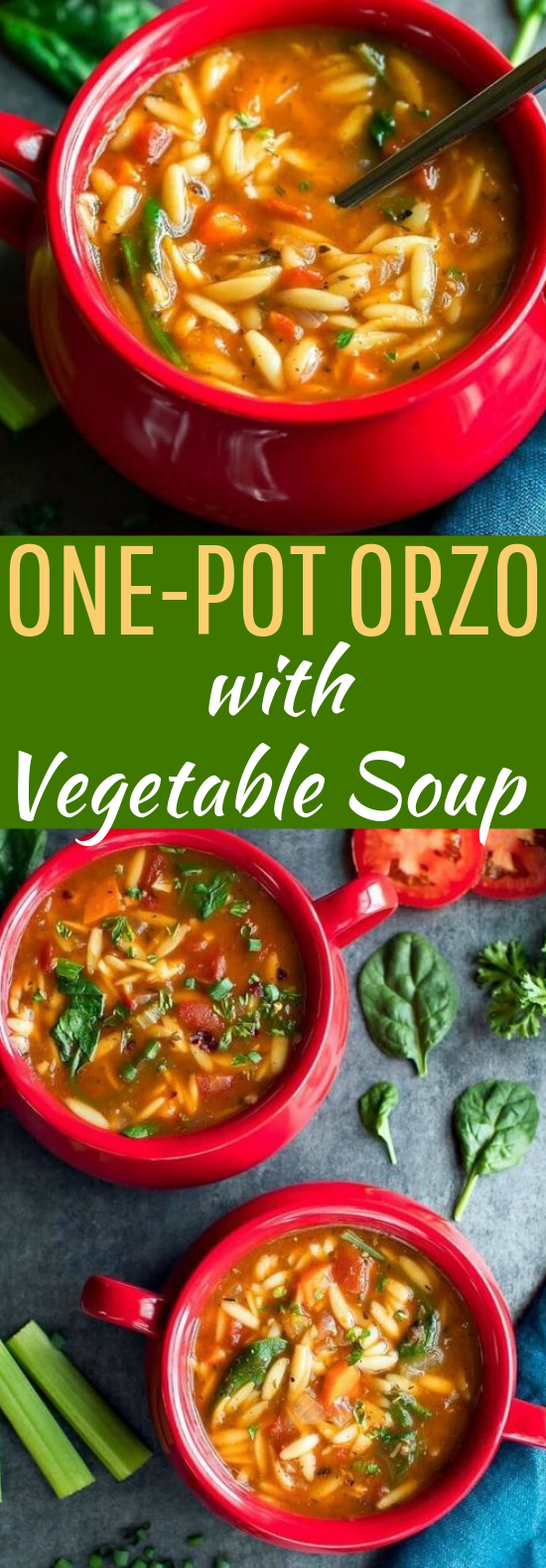 One-Pot Orzo Vegetable Soup #vegetarian #soup