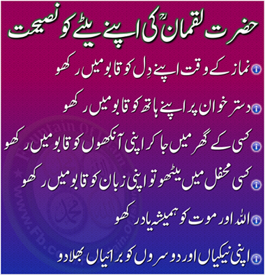 Wise Quotes in Urdu