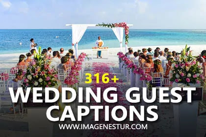 Here are the best Wedding Guest Captions for Instagram Pictures & Selfies and Funny Covid Wedding Captions for Insta Pic for Girls & Boys Photos.