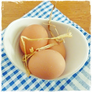 new-laid-eggs
