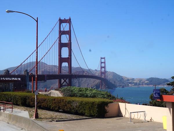 San Francisco Honeymoon | The Highlights