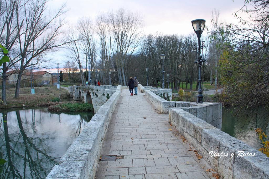 Río Carrión, Palencia