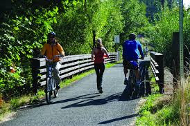 Several Activities Promoting A Healthy Lifestyle For Adults