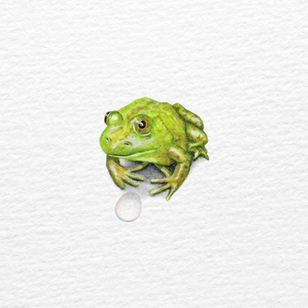 07-Green-Frog-Frank-Holzenburg-Animals-and-Fantasy-Creatures-Tiny-Paintings-www-designstack-co