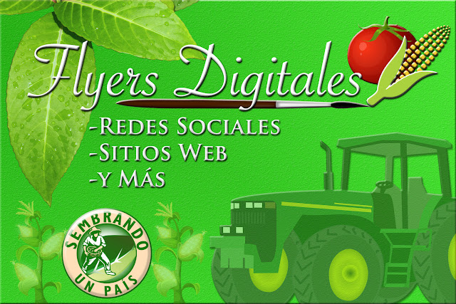 Flyers Digitales