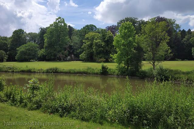 Swamp Cypress Meise Plantentuin Botanic Garden