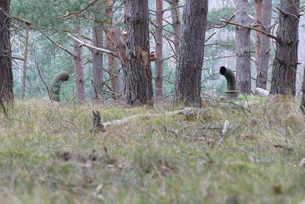 These Guys Discovered Pipes Sticking Out In The Forest. Out Of Curiosity, They Checked What's Under The Pipes And Were Shocked To See THIS!