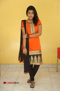 Telugu Actress Chandana Stills in Salwar Kameez at Karam Dosa Movie Press Meet  0097.JPG