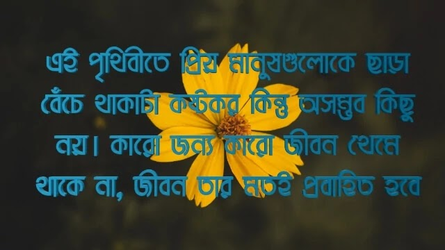 Bangla heart touching love quotes
