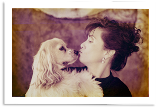 Cocker spaniel kissing a woman