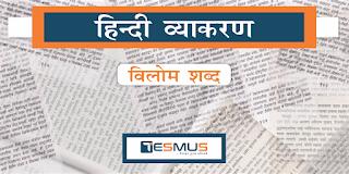 Tesmus | Best Test Preparation Center For Bank, SSC and Govt Job Exams