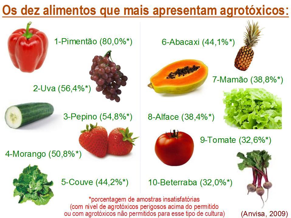 https://1.bp.blogspot.com/-BdkXk63zIe4/TVqa9XYzfDI/AAAAAAAAA5o/GAmudsGxtpg/s1600/10mais_agrotoxicos.jpg