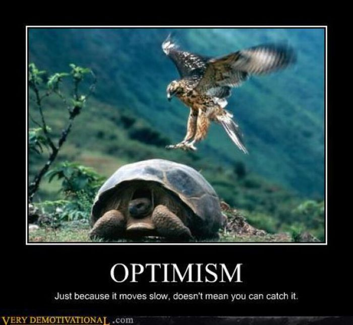 Funny Image Clip Top Demotivational Posters Funny Video Clips