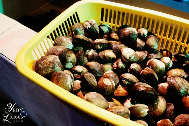 Fresh Clams at Skylight Hotel Seafood Restaurant Best Restaurants in Puerto Princesa Palawan Philippines YedyLicious Manila Food and Travel Blog