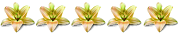 5 goldene Lilien
