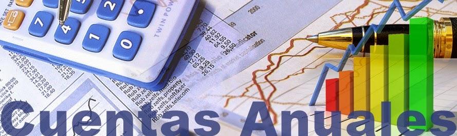 Cuentas anuales de una sociedad