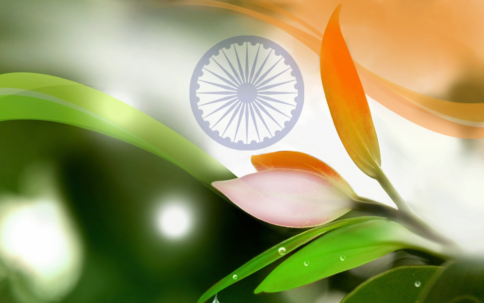 Top Best Independence Day 2019 Hd Mobile Android Wallpapers