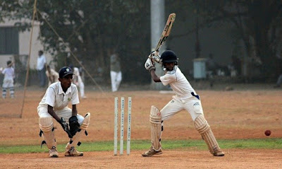 The game of cricket