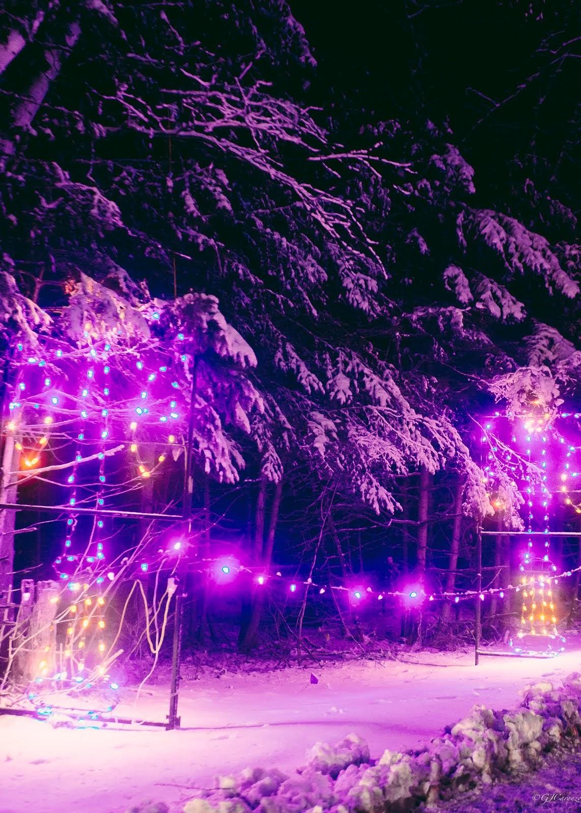 Magic of Lights Ottawa: Things To Do in Ottawa, Ontario, Canada