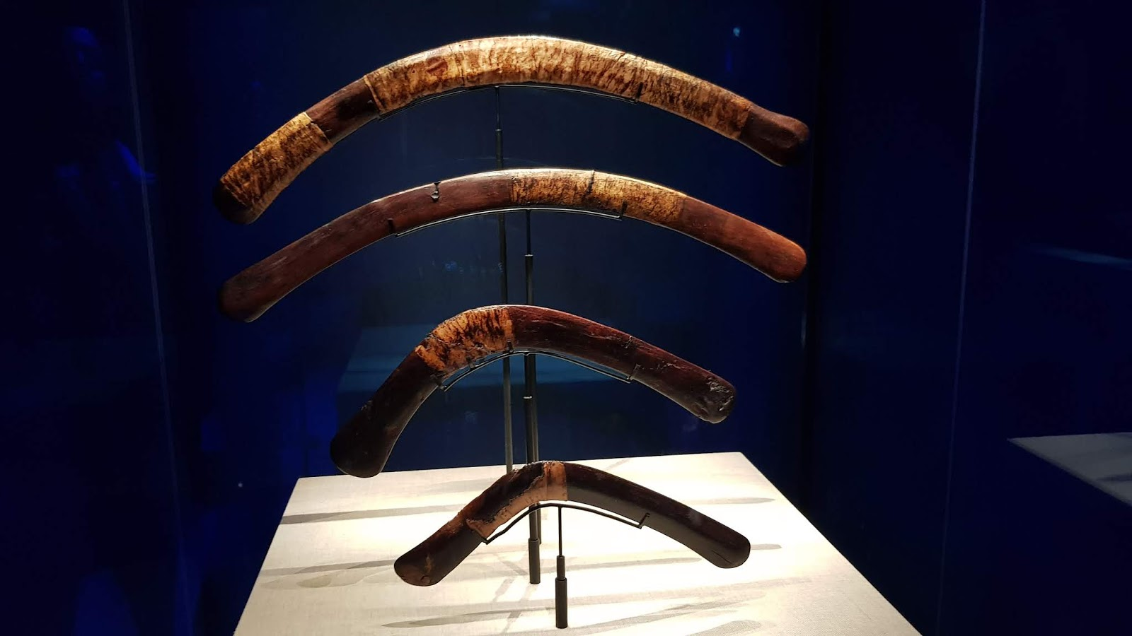 Boomerangs placed in the tomb of King Tutankhamun for his after life sport